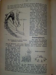 gartenbuch_fuer_anfaenger_15