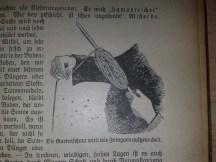 gartenbuch_fuer_anfaenger_6