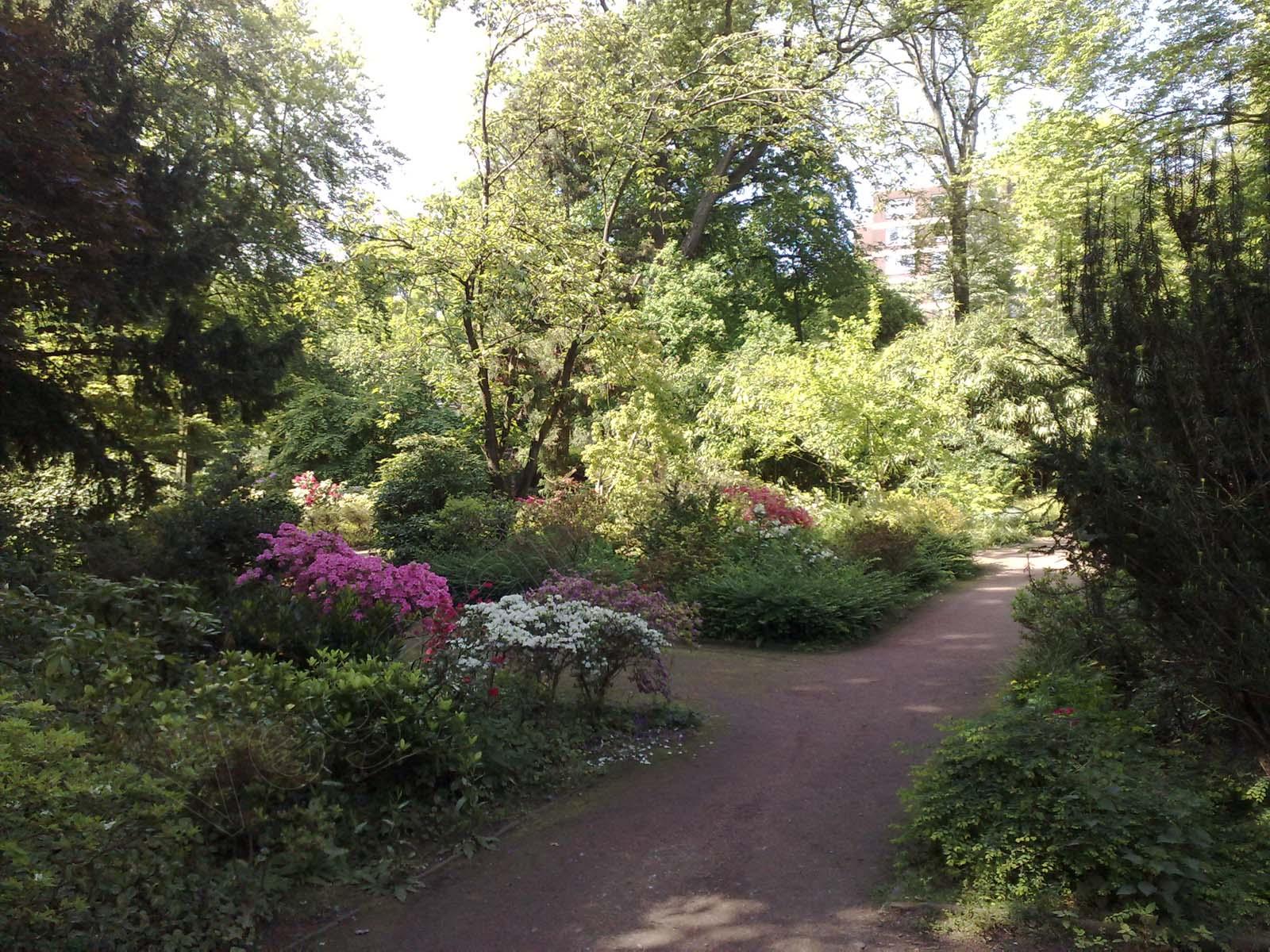 Botanischer Garten Duissern Duisburg Vegetation Daheim