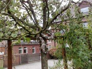 bibelgarten_werlte_05