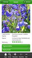 screenshot_pflanzensucher_3