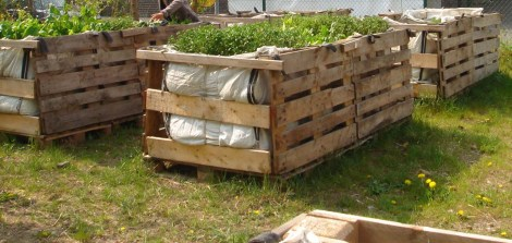 Urban Gardening in improvisierten Hochbeeten (Quelle: http://commons.wikimedia.org/wiki/File:DSC02001_Ausschnitt_Mobiler_Gemeinschaftsgarten_Palette-Bigbag.JPG CC0)