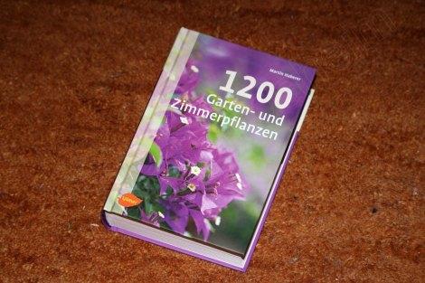 1200_garten_und_zimmerpflanzen_1